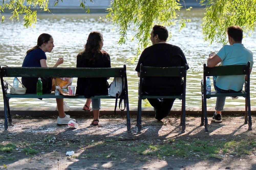 Четири човека са седнали на пейка в парка, около едно езеро, под брезата в един хубав слънчев ден. Две жени си говорят на открито с двама мъже.