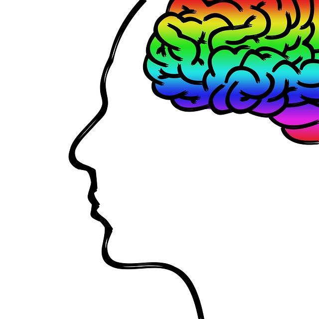 скица на човешко лице в профил с оцветен в най-различни цветове мозък