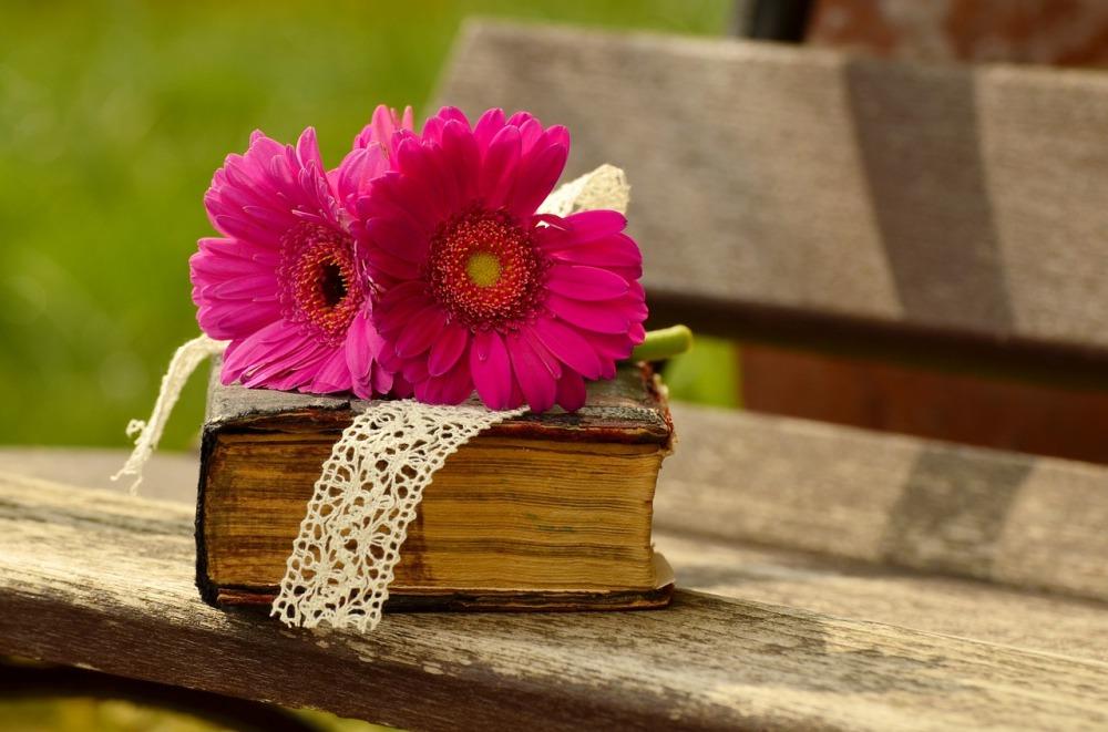 сива пейка, върху нея е поставена дебела старинна книга с твърди корици в кафеникав цвят, с охлузени корици, два гербера в цикламен цвят са поставени върху дебелата книга, под герберите се вижда ивица бяла дантела, слънчев парк